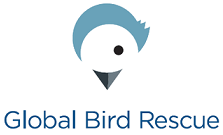 Global Bird Rescue Logo