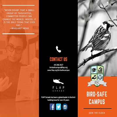 Bird-Safe Campus Brochure